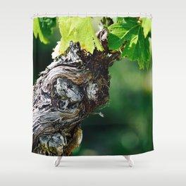 Winding Treasure Shower Curtain
