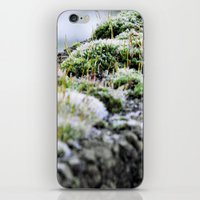 moss iPhone & iPod Skins featuring Moss by Danny Arthurs