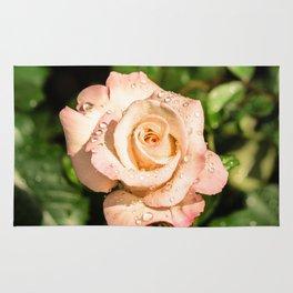 The light pink rose Rug