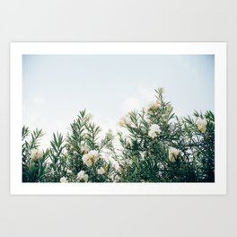 Neutral Spring Tones Art Print