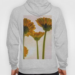 In the Land of Giants Hoody