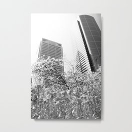 Growing A City, Seattle In Black & White Metal Print