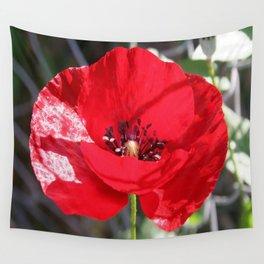 Single Red Poppy Flower  Wall Tapestry