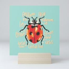 Ladybug scientific anatomy illustration Mini Art Print