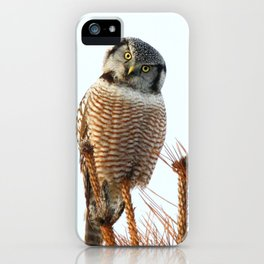 Finding the balance iPhone Case