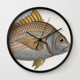 Vintage Illustration of an Yellow-Fin Grunt (1785) Wall Clock