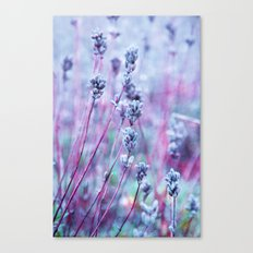 lilac love Canvas Print