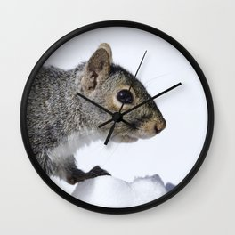 Snow Squirrel Wall Clock
