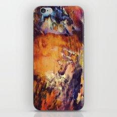 1/3 iPhone & iPod Skin