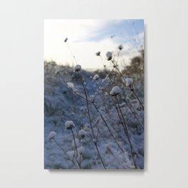First Snowfall I Metal Print
