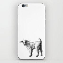 Goat baby G147 iPhone Skin