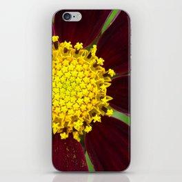 cosmea iPhone Skin