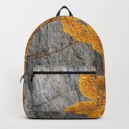 Yellow Lichen Backpack