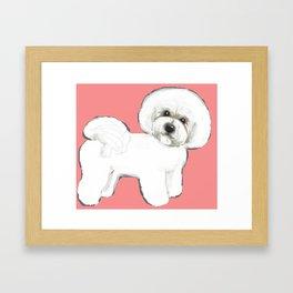 Bichon on coral Framed Art Print