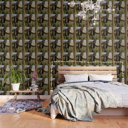 Forest Ninja Wallpaper