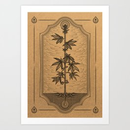 Cannabis Sativa Art Print