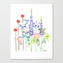 Wildflower art, watercolor painting Canvas Print