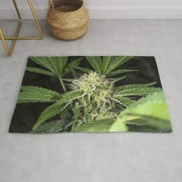 cannabis flower and leaves Rug