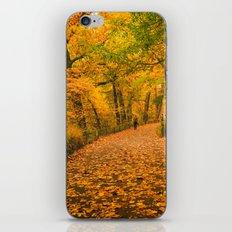 New York City Autumn Dusk in Central Park iPhone & iPod Skin
