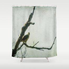 Penetrating Gaze Shower Curtain
