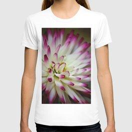 Hayley Jane Dahlia T-shirt