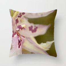 Cambria 5-8022 Throw Pillow