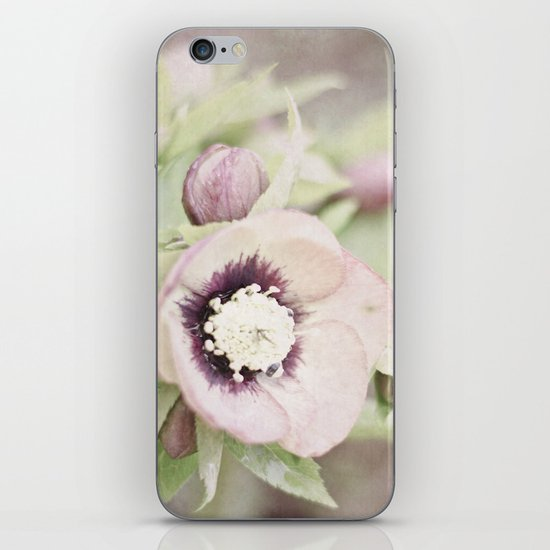 Pastel Flowers iPhone & iPod Skin