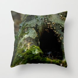 Hidden Home #1 Throw Pillow