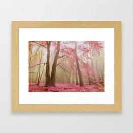 atmospheric autumn Framed Art Print