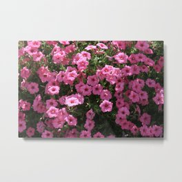 A Ton Of Pink Flowers Metal Print