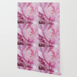 Floral Fun - Peony in pink 4 soft and billowy Wallpaper