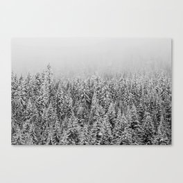 Black and White Snowy trees Canvas Print