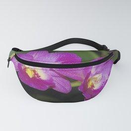 Magnificent Magenta Orchid - Ctna Capri Fanny Pack
