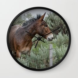 Mule in Wyoming Wall Clock