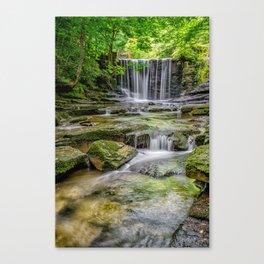 Clywedog Waterfall Canvas Print