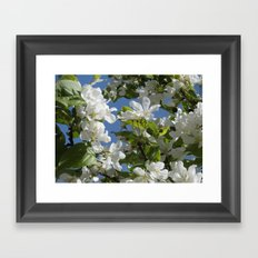 the signs of spring Framed Art Print
