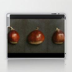 Little Chestnuts Laptop & iPad Skin