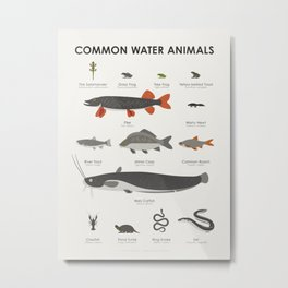 Infographic Guide to Water Animals Metal Print