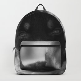 Black white portrait of a shepherd puppy. Backpack