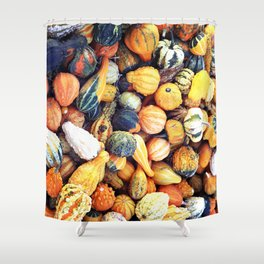 Colorful Gourds C Shower Curtain