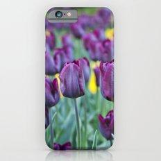 morados iPhone 6s Slim Case