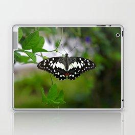 Butterfly Medium Laptop & iPad Skin