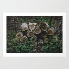 Wood pile 3 Art Print