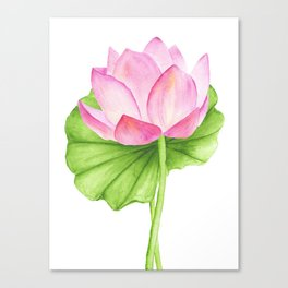 Lotus flower. Watercolor drawing Canvas Print