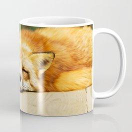 Cutie Foxy Nappy Coffee Mug