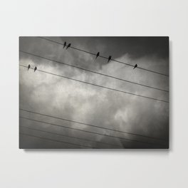The Trace 11 24 Metal Print