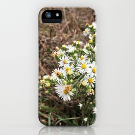 Tennessee Daisies iPhone Case