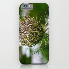 Wild Carrot Slim Case iPhone 6s