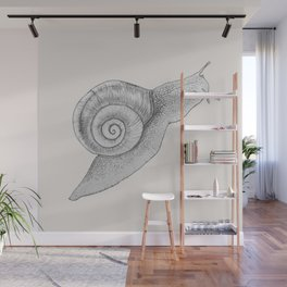 A Snail Of A Tale Wall Mural
