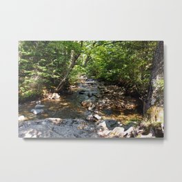 Down River Metal Print